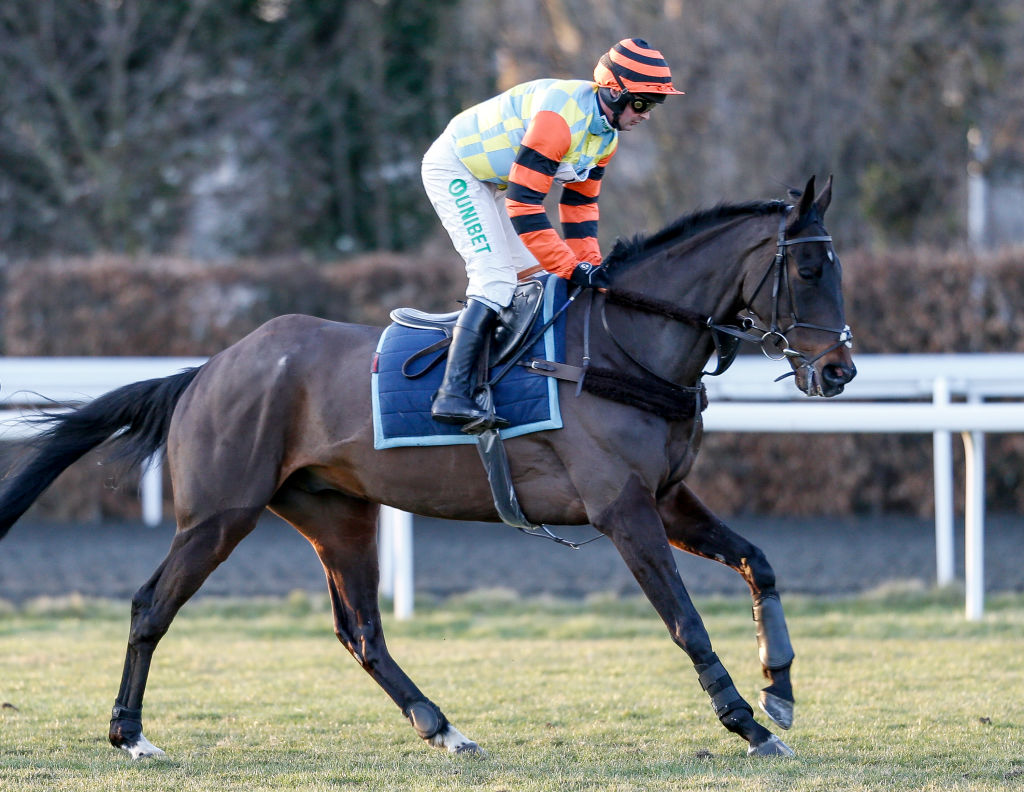 King George Vi Chase Live Streaming Horse Racing Preview