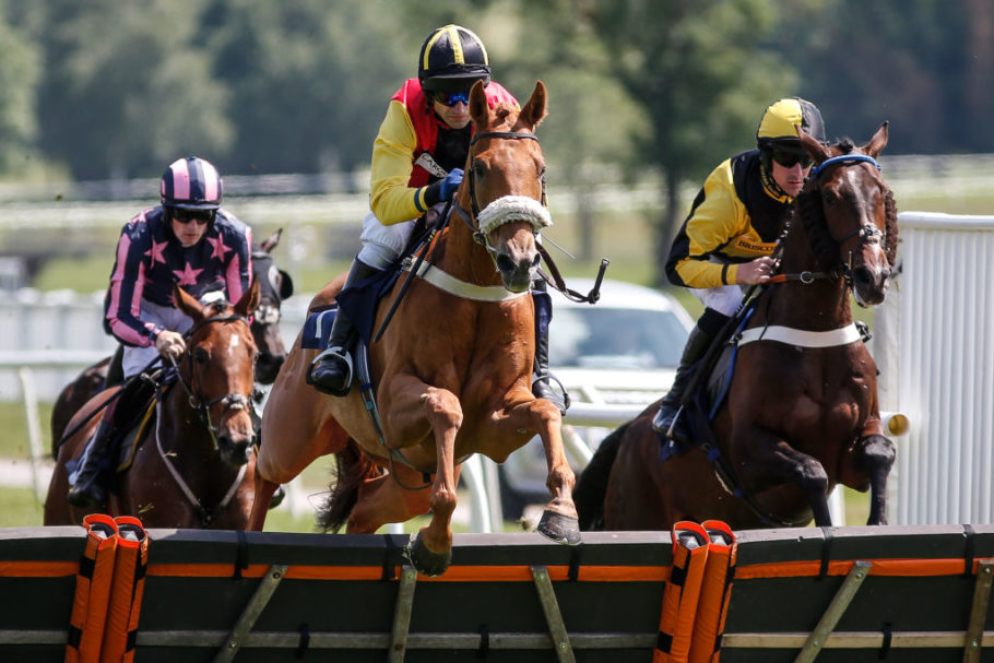Live Streaming Horse Racing