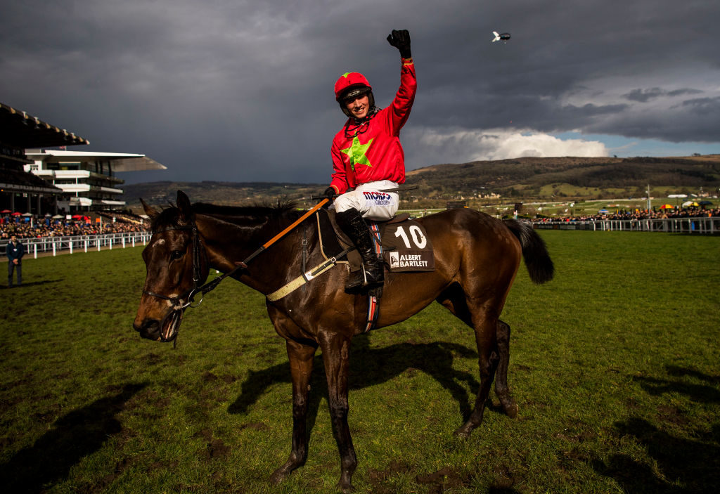 Cheltenham Festival 2019 live streaming